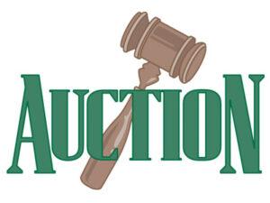 June 12th – D'Hanis TX Farm, Ranch and Construction Equipment Auction