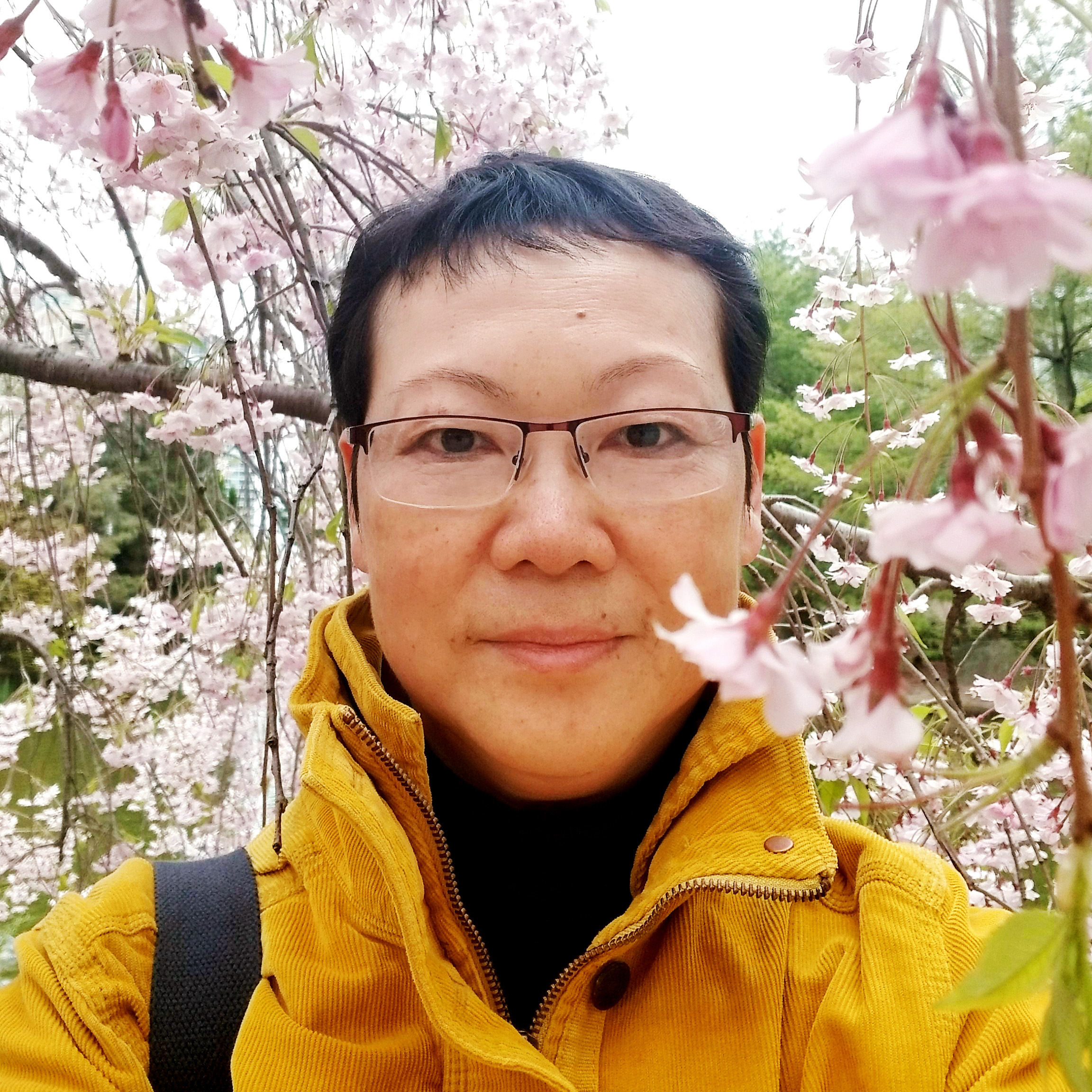 Chemistry - Ms. Guan
