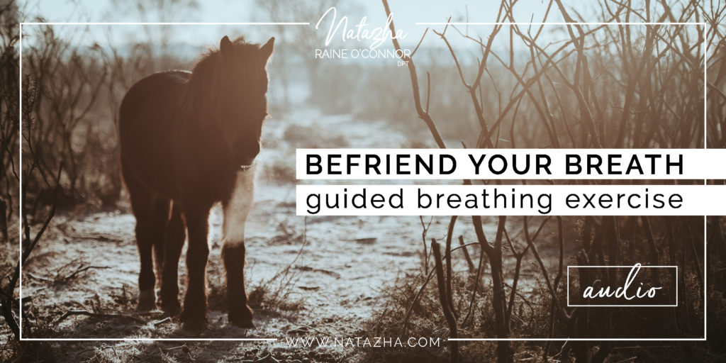 Befriend Your Breath Podcast