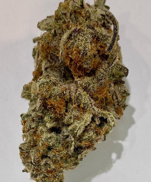 Tropical Truffle