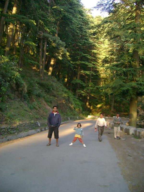 Chail-Shimla highway