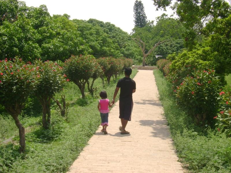 Walk through the Gardens