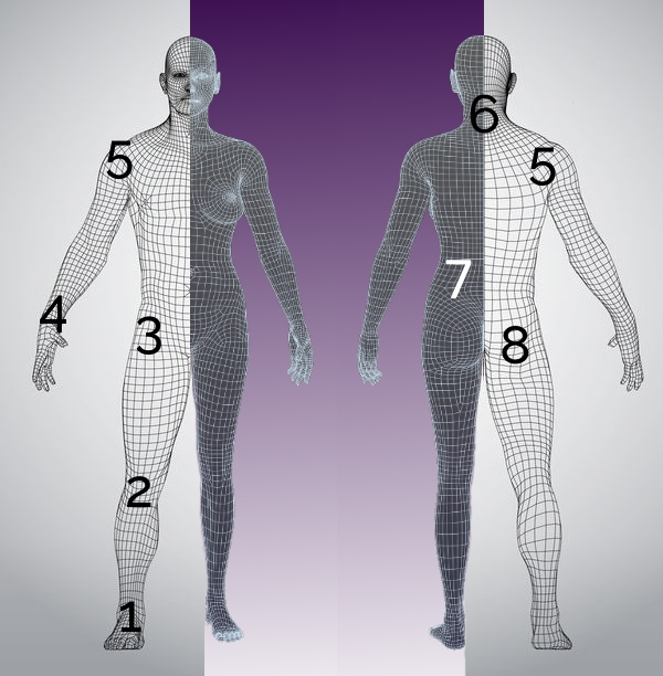 Main Pain Positions in the Body