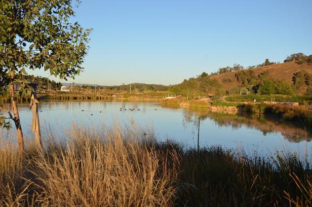Creating Cravens Creek Ponds
