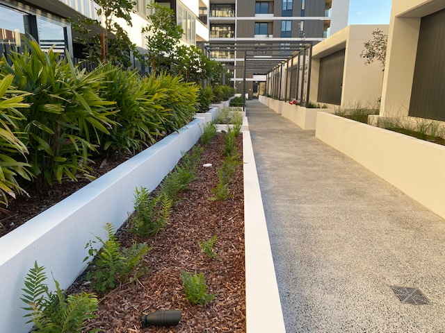 Completed project: Woolooware Bay Stage 3