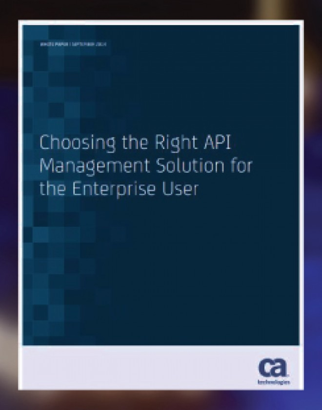 Choosing the Right API Management Solution for the Enterprise User