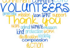 ADA 2021 Volunteer Hours as of July 24th