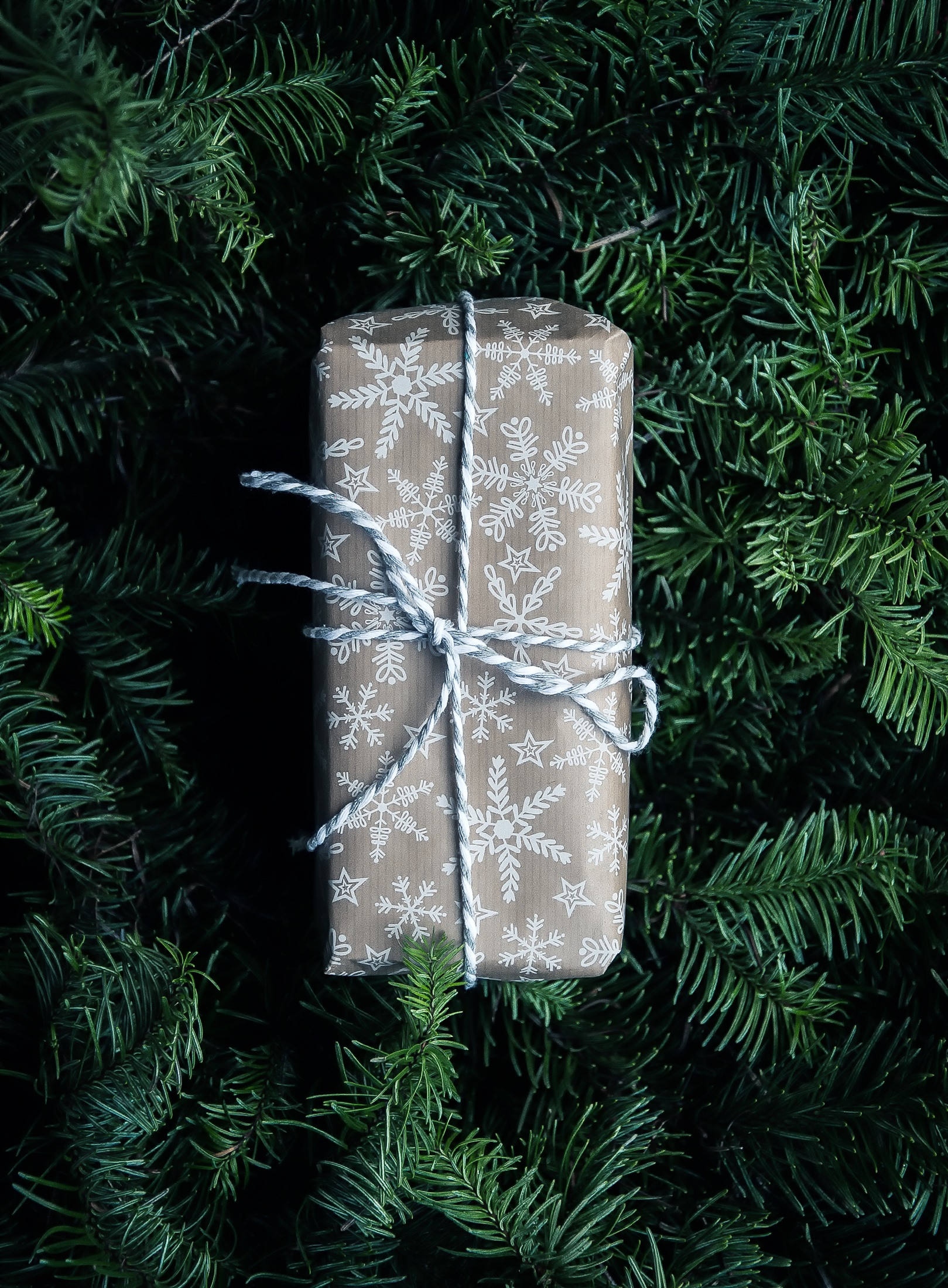 Last Minute Gifts For Lifestyle Changers