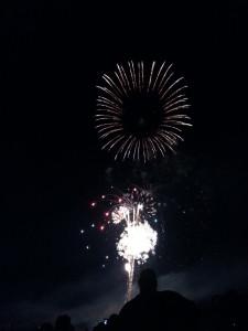 4th of July Fireworks in Boise's Ann Morrison Park