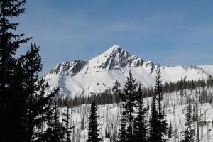 Beaverdam Peak is reaching out to us.