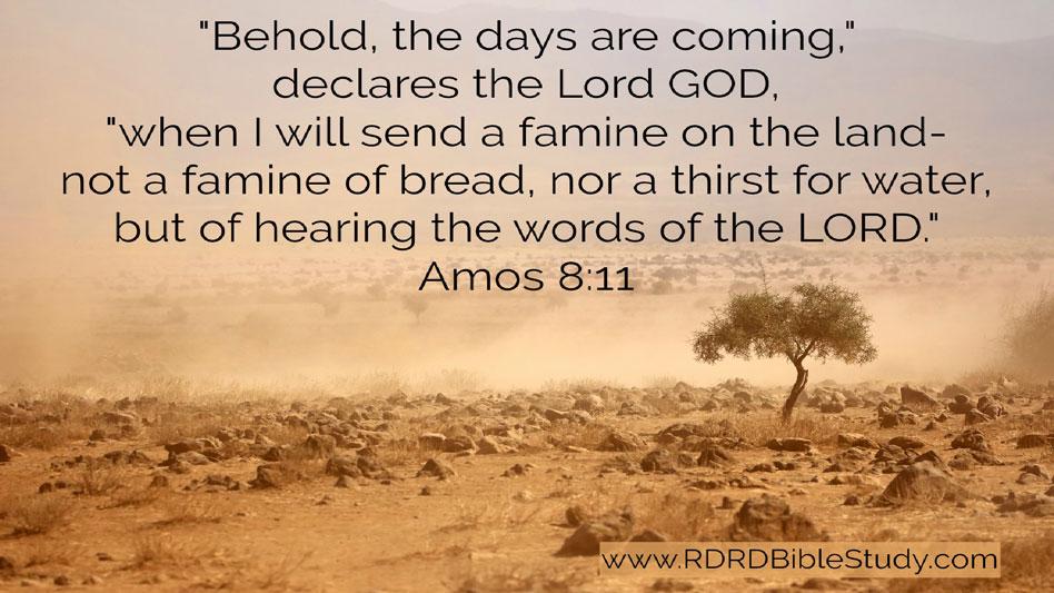 RDRD Bible Study Amos 8 11