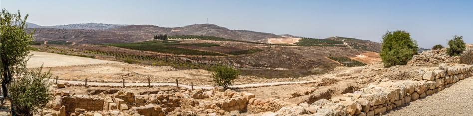 RDRD Bible Study Shiloh Israel Landscape View From Archaelogical Park 1 of 3