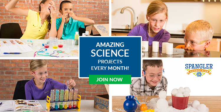 Amazing Science Projects Every Month