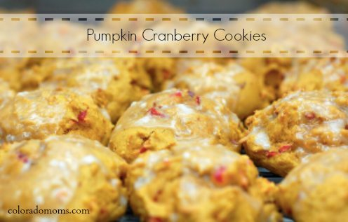 pumpkin cranberry cookie
