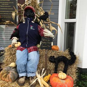 scarecrow14