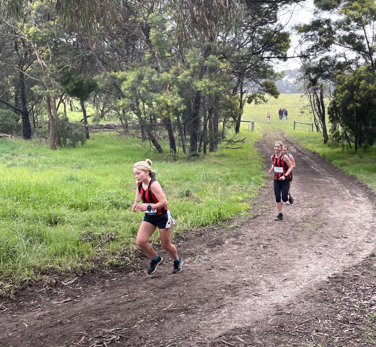 Runners at Cross Country Race