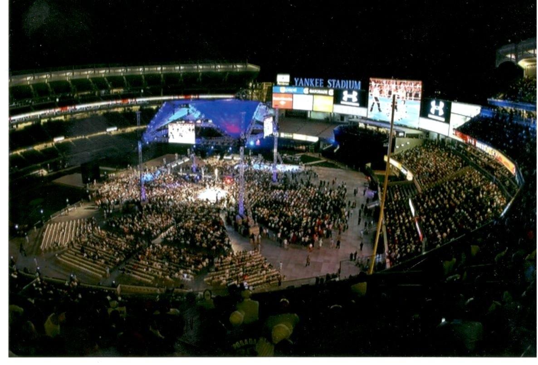Yankee Stadium Fights 11