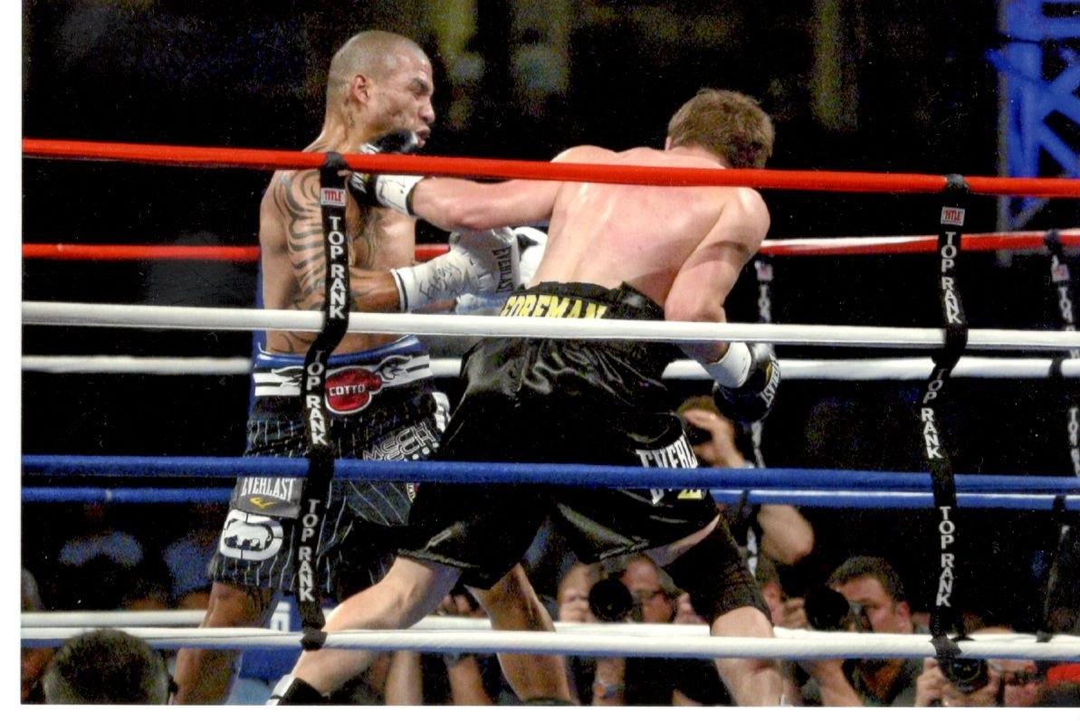 Yankee Stadium Fights 12