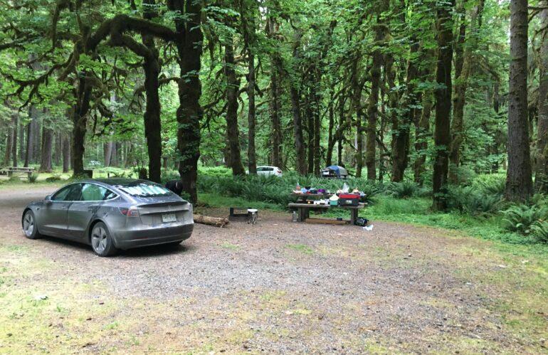 Real Life Model 3 Road Trip: Day 14 Sasquatch Territory