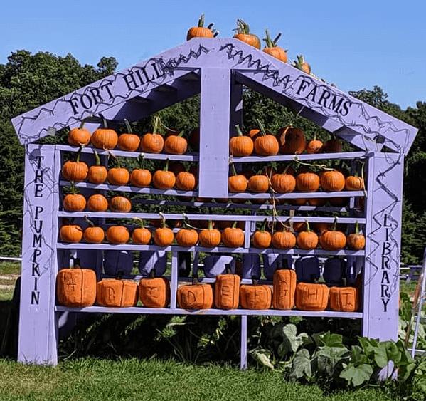 Pumpkin Library