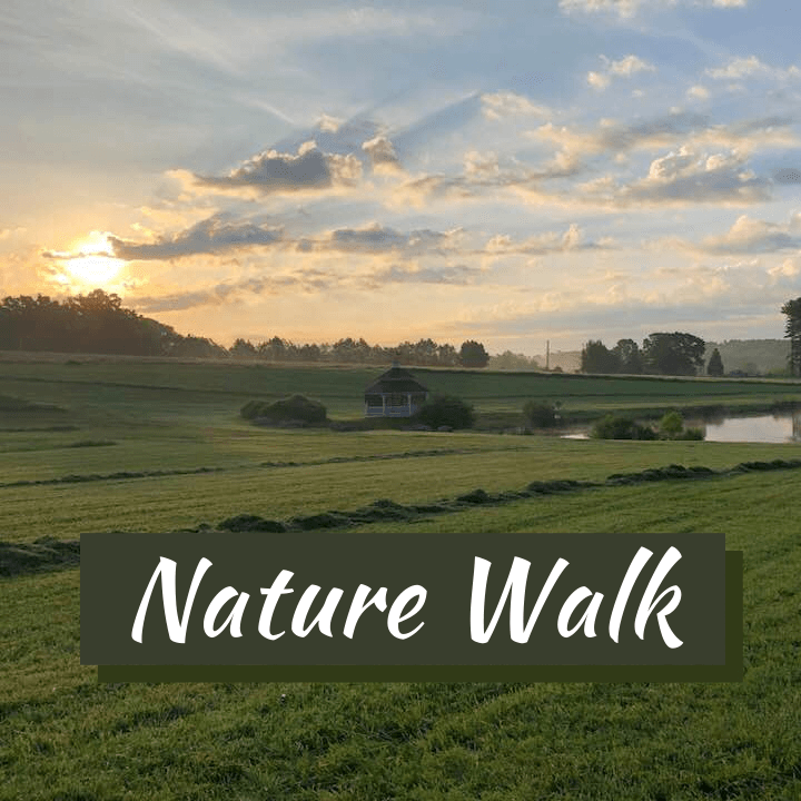 Nature Walk at sunrise at Fort Hill Farms
