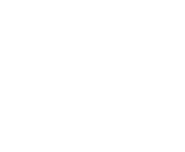 ADMT Solutions logo without the business name (white)