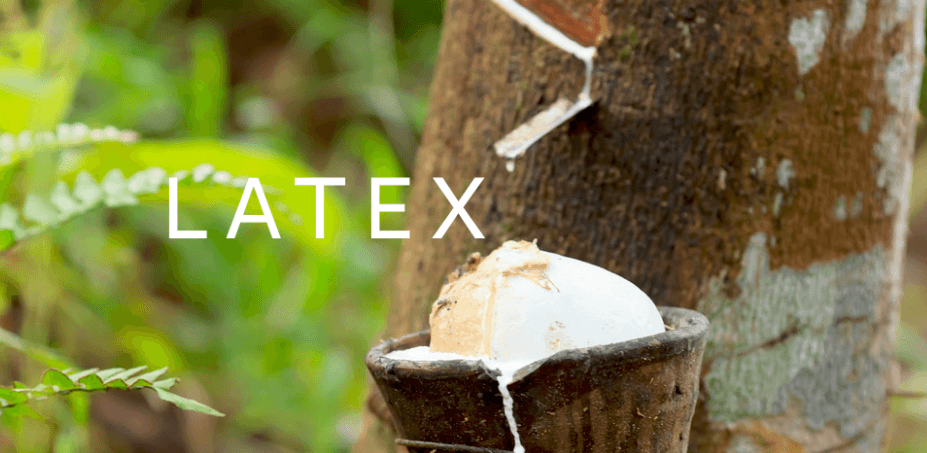 Natural latex from a tree source