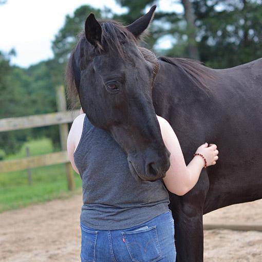 Horse rescue organization