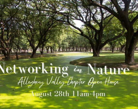 Networking in Nature