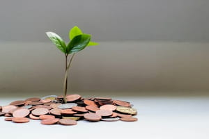 Cannabis Real Estate Funding
