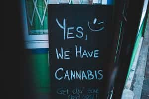 New Jersey Legalizes Recreational Marijuana