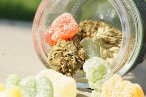 Alaska Cannabis Edibles