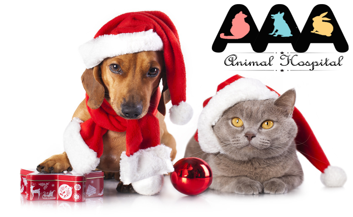 Pet Safety Tips for Holidays