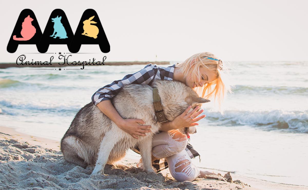 National Hug Your Dog Day