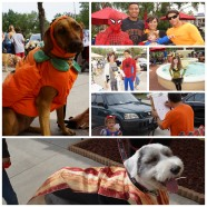 9th Annual Wagoween Party!  Saturday, October 26 11am-1pm