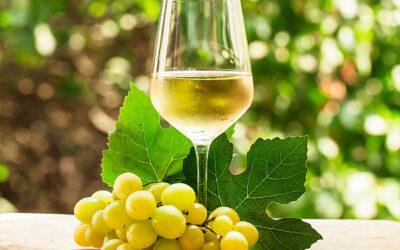 Great Grapes – Chardonnay