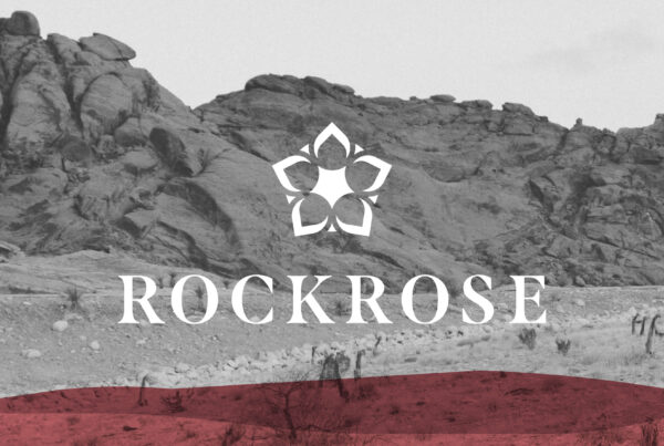 Marketing and Design Agency - Poloko - Northern Beaches - Rockrose