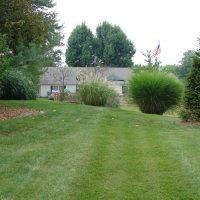 view-from-backyard-toward-building-2