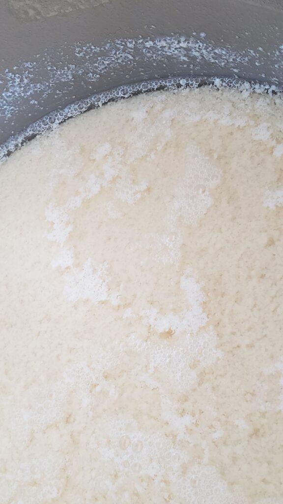 tofu curds & whey
