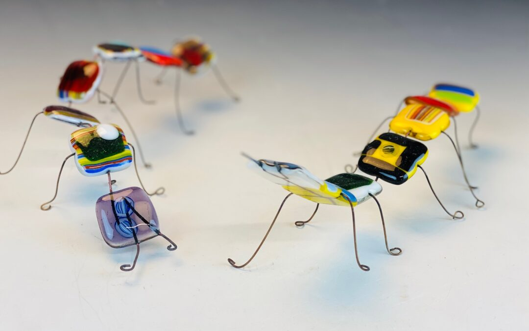 Glass Centipede Summer Workshop (7A1GF)