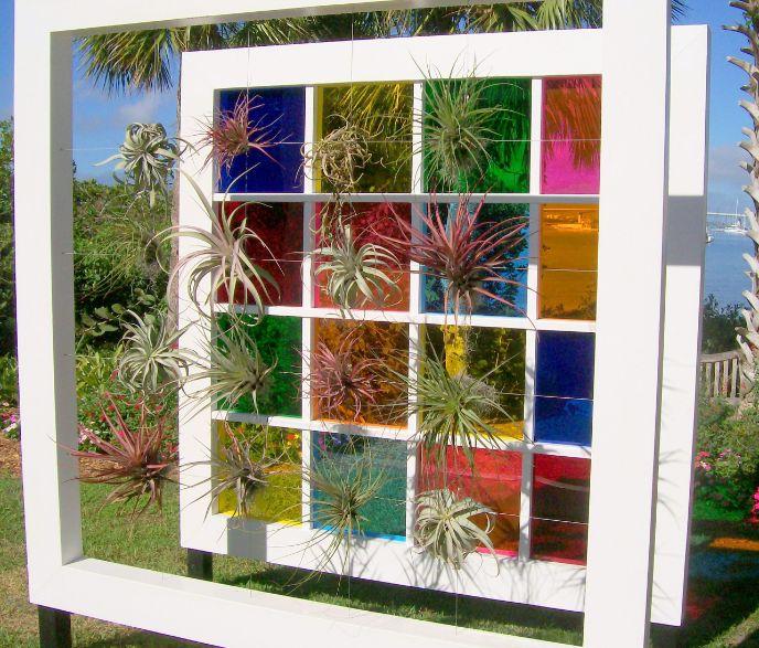 Bromeliad Display Warhol like arrangement