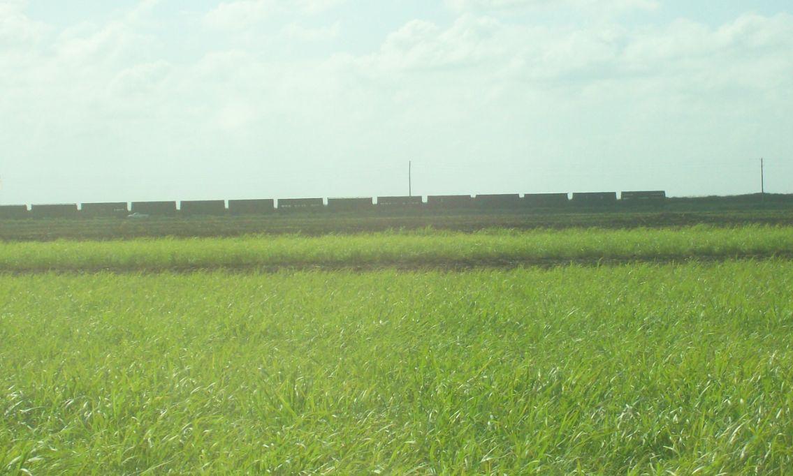 US Sugar railroad