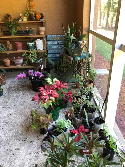 Container Gardening - Jean Shields