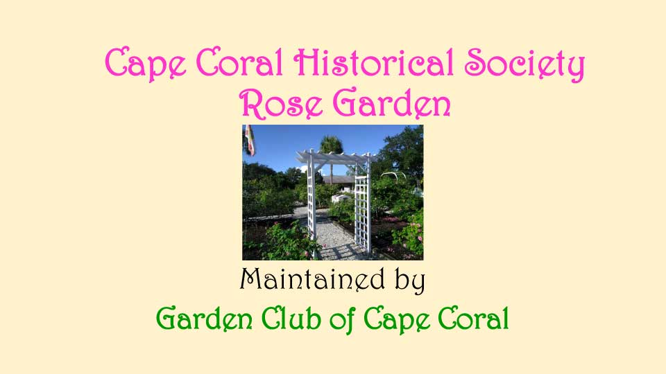 October Meeting 2020 - Rose Garden - 1