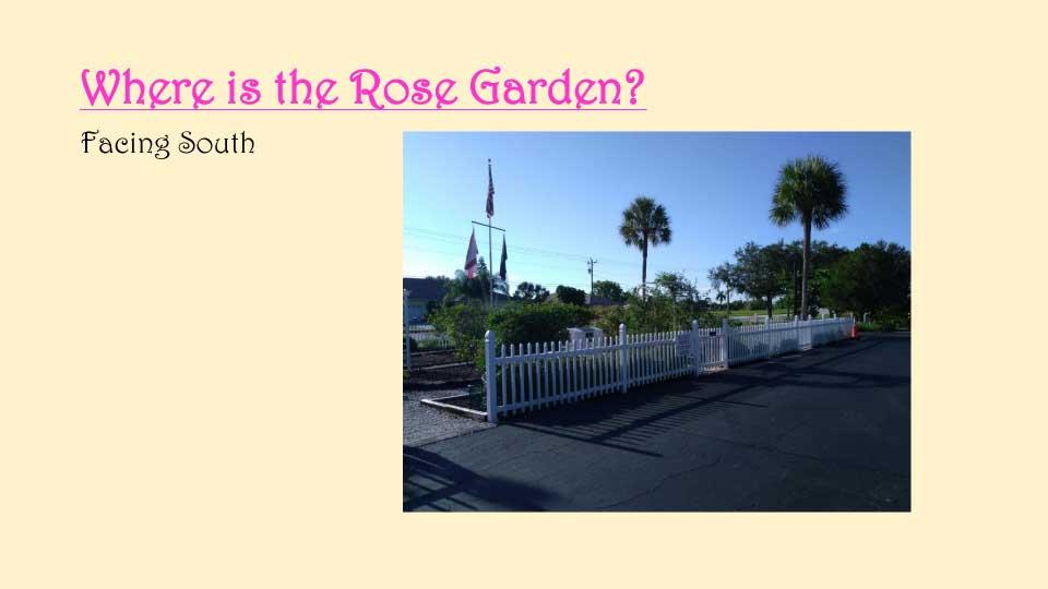 October Meeting 2020 - Rose Garden - 6