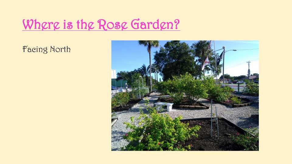 October Meeting 2020 - Rose Garden - 7
