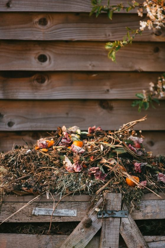 Florida Friendly Landscaping Principle #7 – Recycle Yard Waste — Janetta Fox