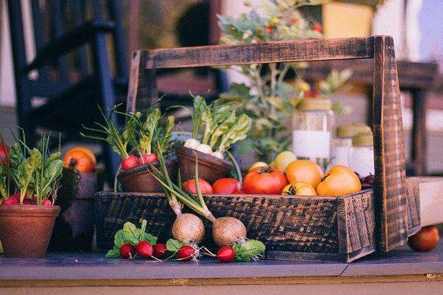 Garden Club: Start a veggie garden … in the dead of winter! — Sherie Bleiler