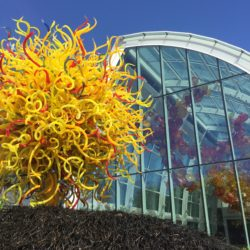top-seattle-attractions-chihuly-garden-glass