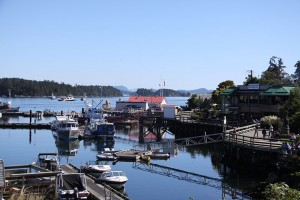 ganges-harbour